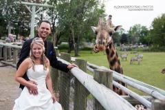 mariage-maries-girafes